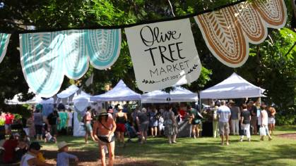 students guide to life - olive tree market